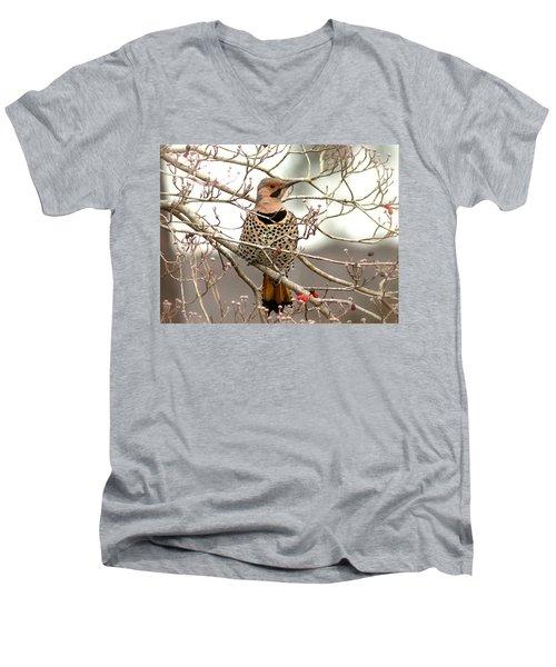 Flicker - Alabama State Bird - Attention Men's V-Neck T-Shirt