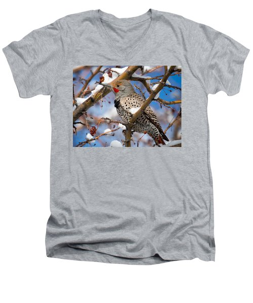 Flicker In Snow Men's V-Neck T-Shirt