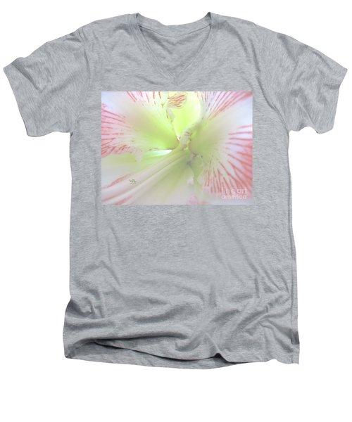Flower Of Light Men's V-Neck T-Shirt