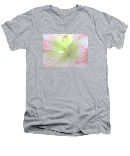 Flower Of Light Men's V-Neck T-Shirt