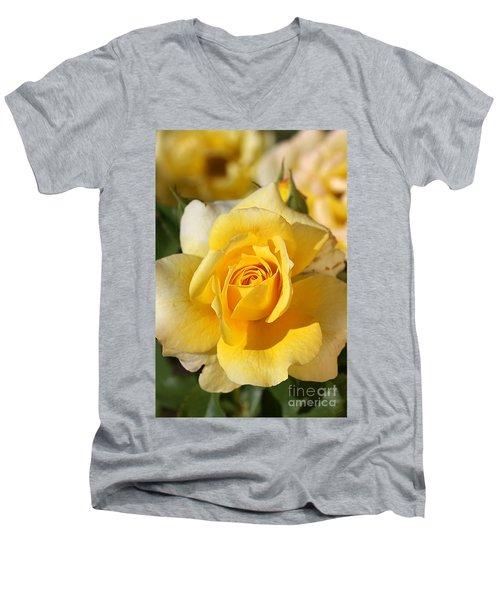 Flower-yellow Rose-delight Men's V-Neck T-Shirt by Joy Watson