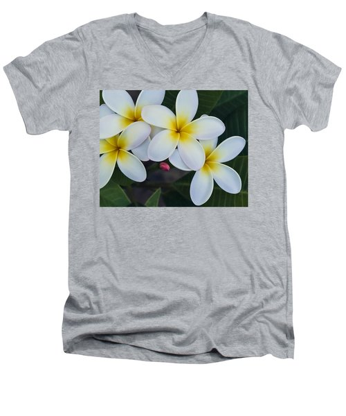 Flowers And Their Bud Men's V-Neck T-Shirt