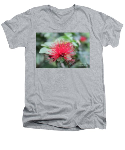 Men's V-Neck T-Shirt featuring the photograph Fluffy Pink Flower by Sergey Lukashin