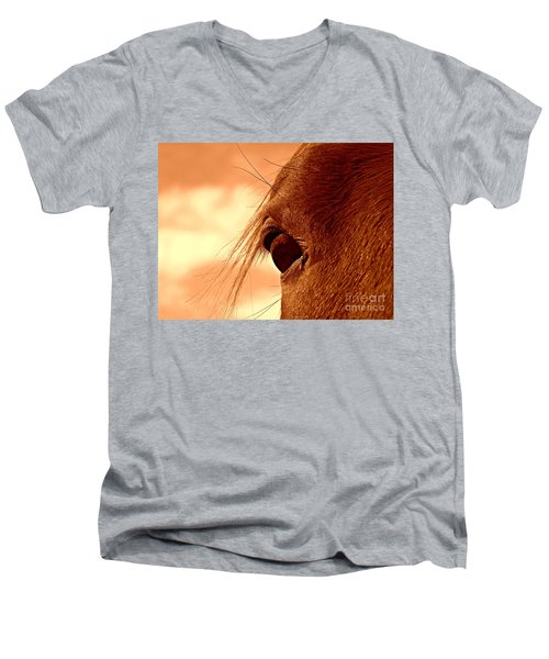 Fly In The Eye Men's V-Neck T-Shirt