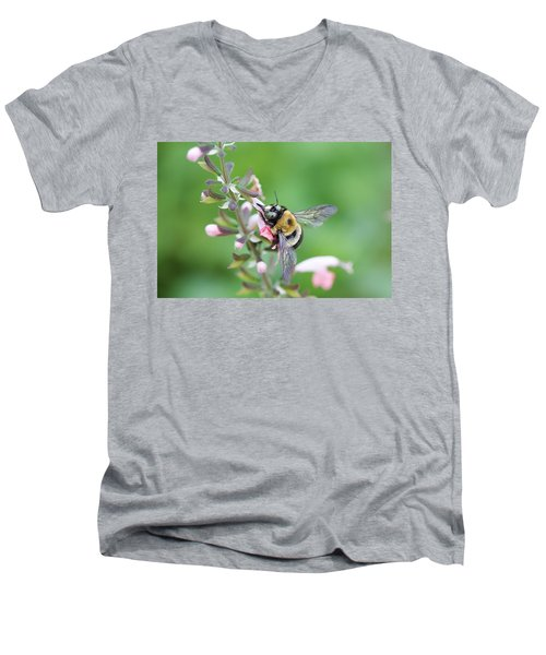 Foraging For Nectar Men's V-Neck T-Shirt