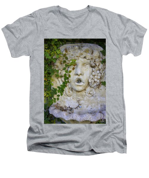 Forgotten Garden Men's V-Neck T-Shirt by Laurie Perry