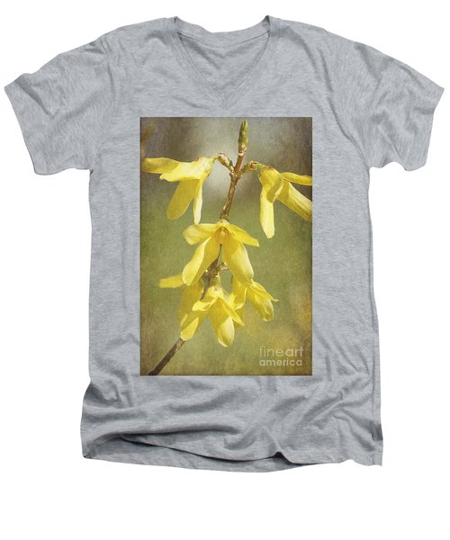 Forsythia Men's V-Neck T-Shirt