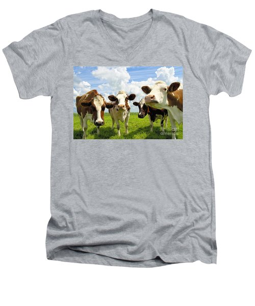 Four Chatting Cows Men's V-Neck T-Shirt