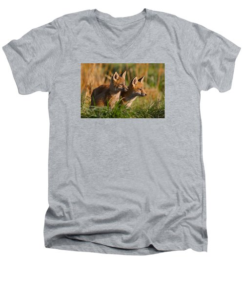 Fox Cubs At Sunrise Men's V-Neck T-Shirt