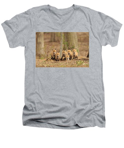 Fox Family Portrait Men's V-Neck T-Shirt