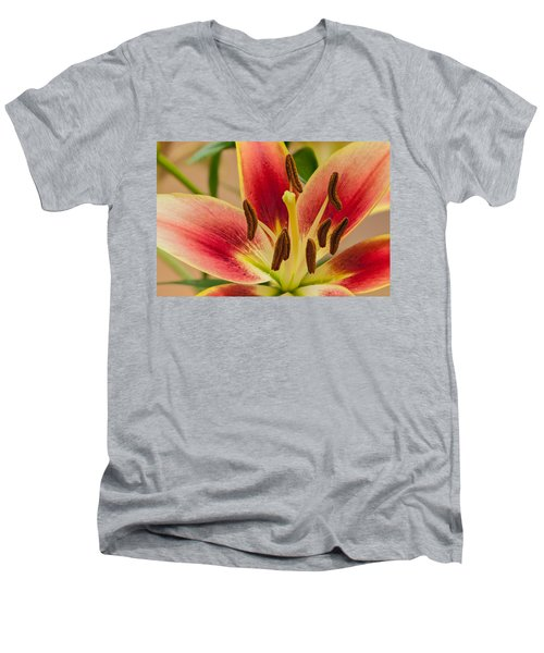 Fragile Beauty Men's V-Neck T-Shirt