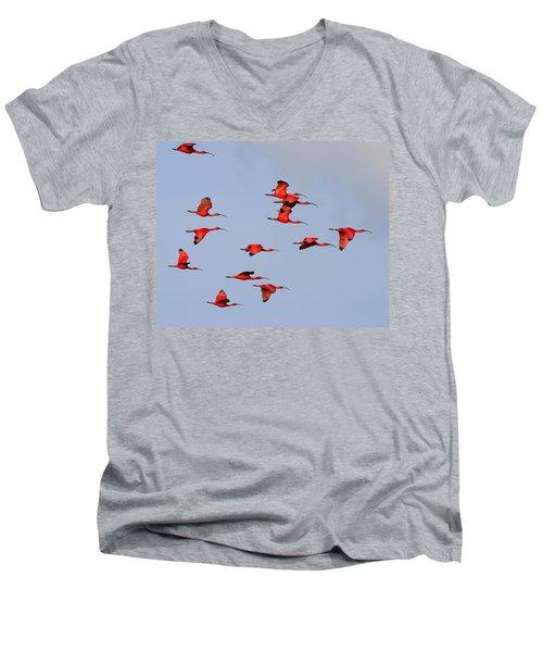 Frankly Scarlet Men's V-Neck T-Shirt