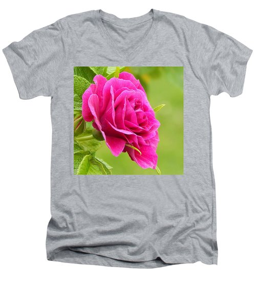 Friendship Rose Men's V-Neck T-Shirt