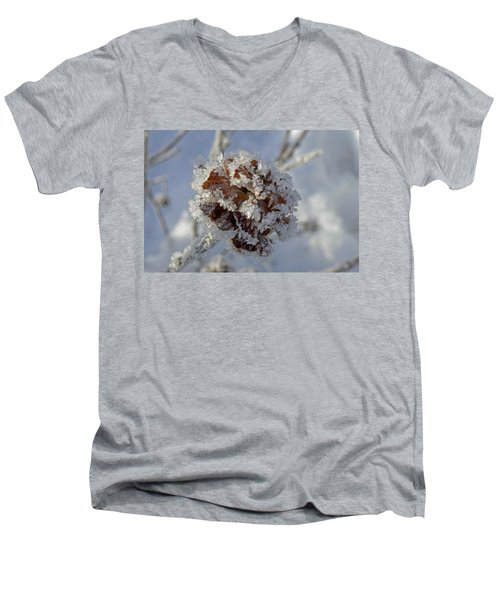 Frosted Willow Rose Men's V-Neck T-Shirt by Cathy Mahnke