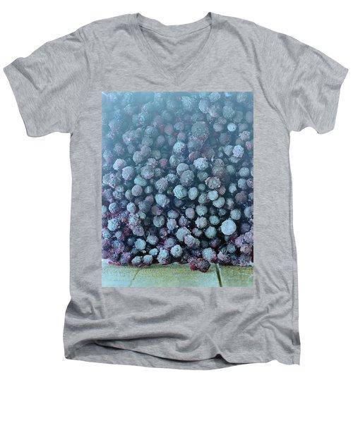 Frozen Blueberries Men's V-Neck T-Shirt