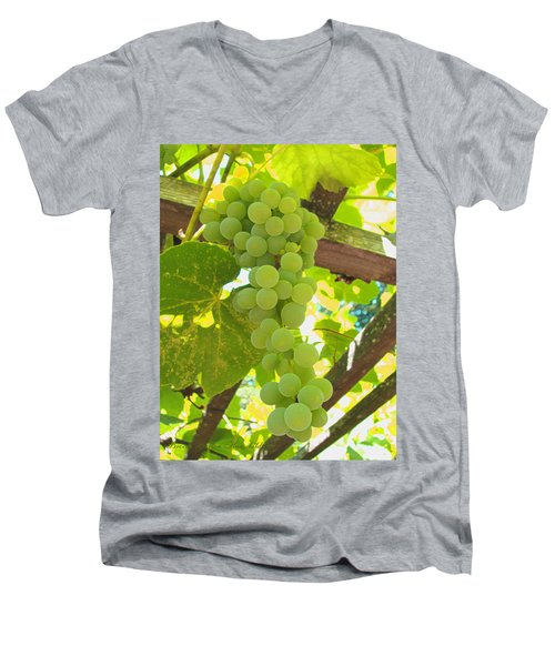 Men's V-Neck T-Shirt featuring the photograph Fruit Of The Vine - Garden Art For The Kitchen by Brooks Garten Hauschild
