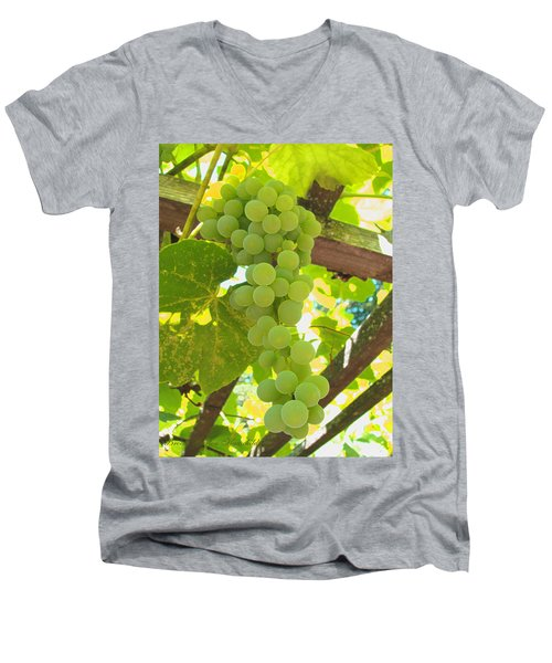 Fruit Of The Vine - Garden Art For The Kitchen Men's V-Neck T-Shirt