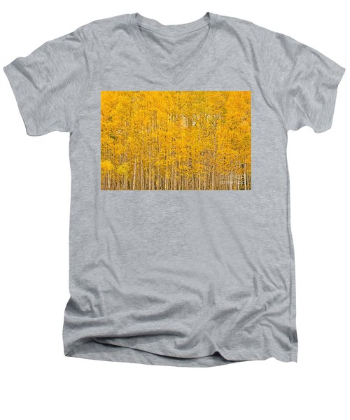 Fullness Of Gold Men's V-Neck T-Shirt