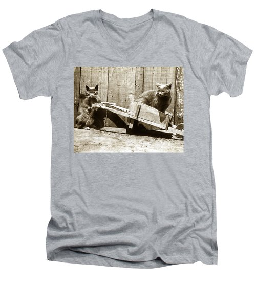 Men's V-Neck T-Shirt featuring the photograph Fun With Cats Henry King Nourse Photographer Circa 1900 by California Views Mr Pat Hathaway Archives