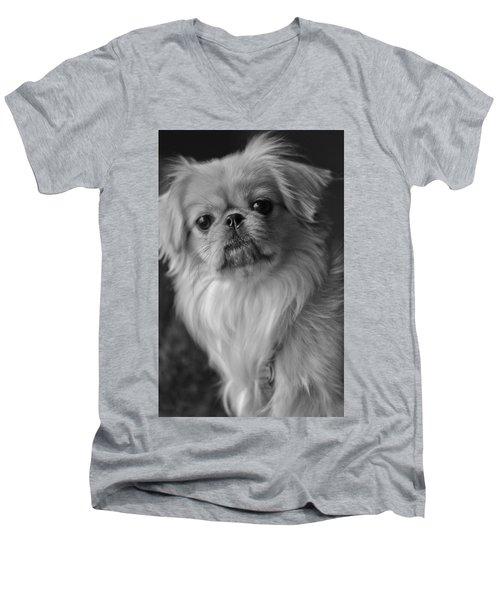 Fuzzface Men's V-Neck T-Shirt
