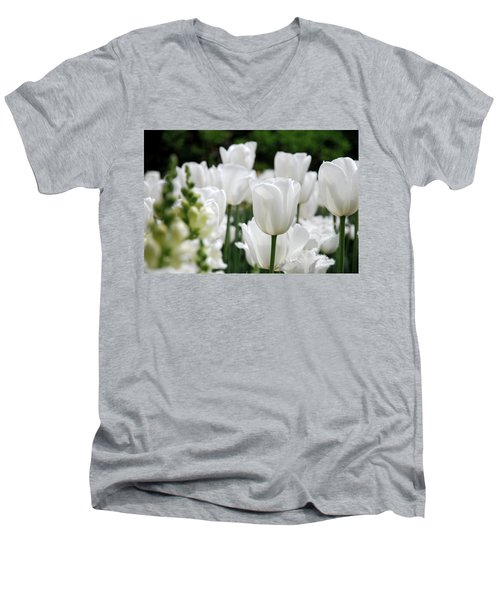 Garden Beauty Men's V-Neck T-Shirt