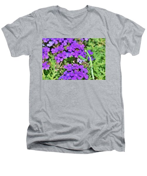 Garden Prayer Men's V-Neck T-Shirt