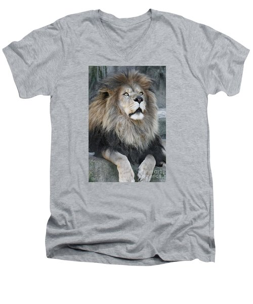 Gazing Men's V-Neck T-Shirt