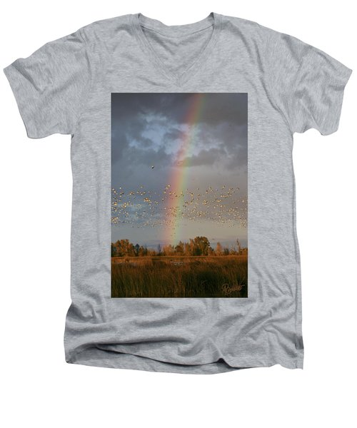 Geese And Rainbow Men's V-Neck T-Shirt