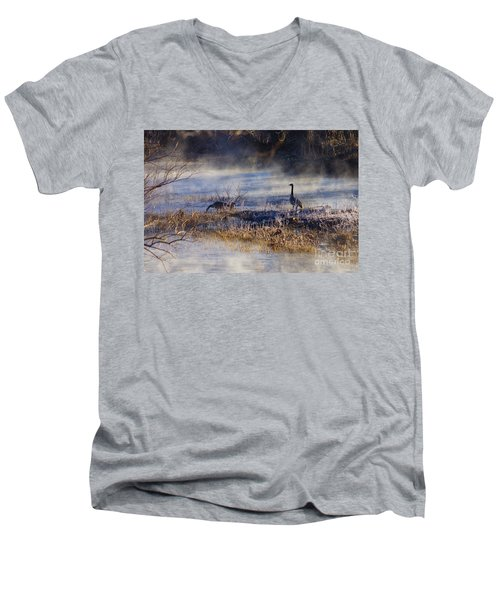 Geese Taking A Break Men's V-Neck T-Shirt