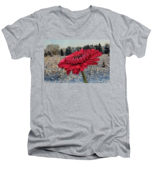 Gerbera Daisy In The Snow Men's V-Neck T-Shirt
