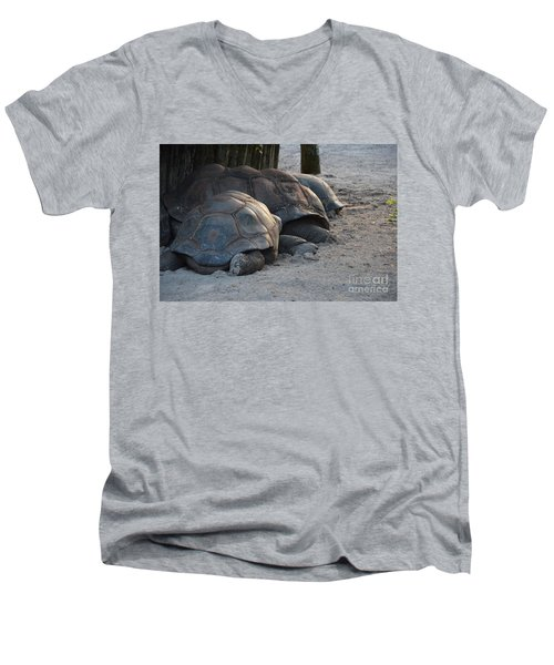 Men's V-Neck T-Shirt featuring the photograph Giant Tortise by Robert Meanor