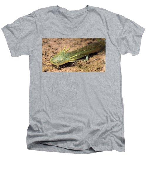 Gills Men's V-Neck T-Shirt