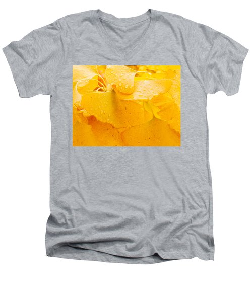 Men's V-Neck T-Shirt featuring the photograph Ginkgo Biloba Leaves by Vizual Studio