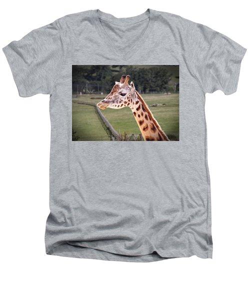 Giraffe 02 Men's V-Neck T-Shirt