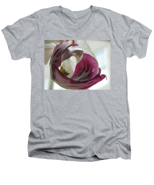 Glass Beauty Men's V-Neck T-Shirt
