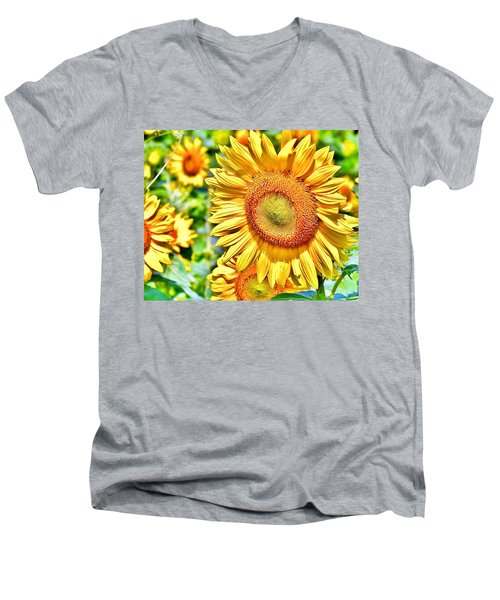 Glorious Sunflowers Men's V-Neck T-Shirt