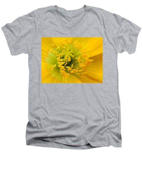 Men's V-Neck T-Shirt featuring the photograph Glory Of Nature by Deb Halloran