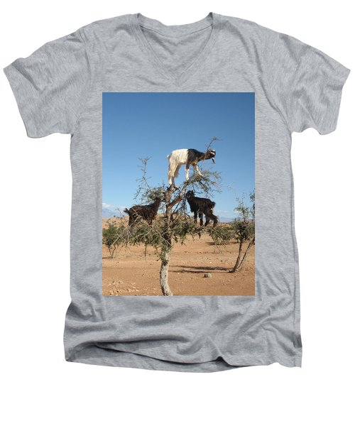 Goats In A Tree Men's V-Neck T-Shirt