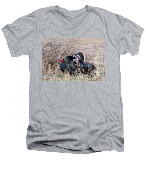 Gobbling Turkeys Men's V-Neck T-Shirt