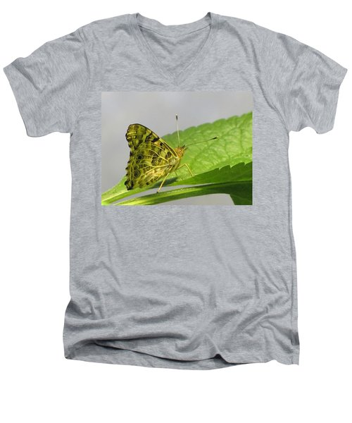 Gold And Green  Men's V-Neck T-Shirt
