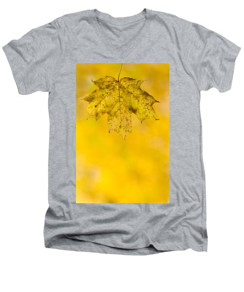 Men's V-Neck T-Shirt featuring the photograph Golden Autumn by Sebastian Musial