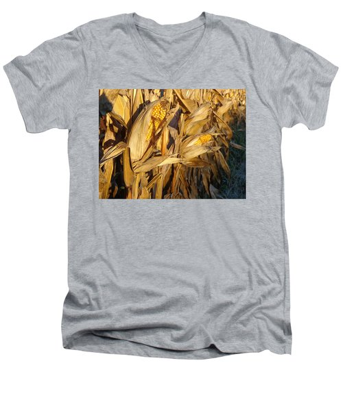 Men's V-Neck T-Shirt featuring the photograph Golden Corn by Joseph Skompski
