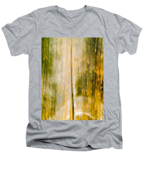 Golden Falls  Men's V-Neck T-Shirt