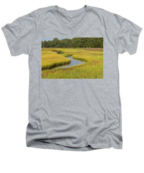 Golden Marsh Men's V-Neck T-Shirt