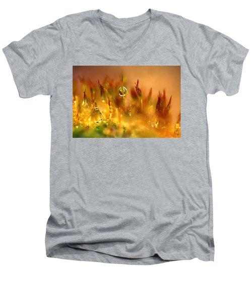 Golden Palette Men's V-Neck T-Shirt
