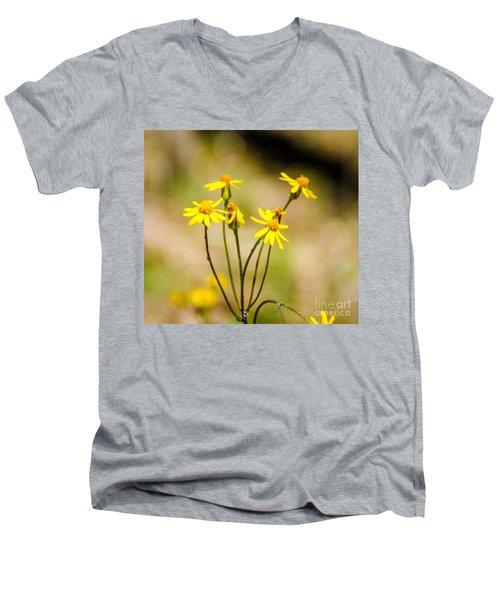 Golden Ragwort Men's V-Neck T-Shirt