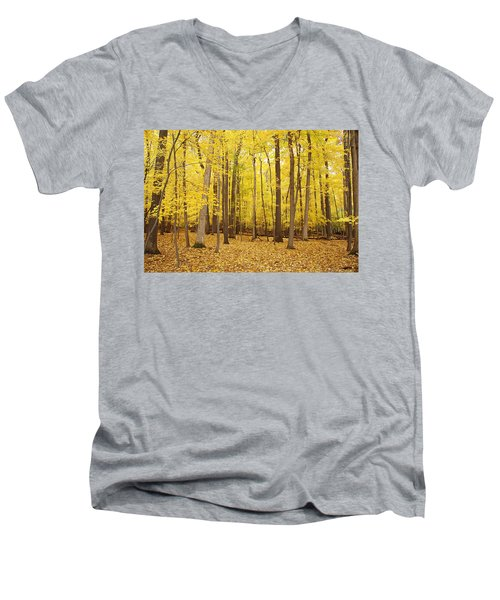 Golden Woods Men's V-Neck T-Shirt by Aimee L Maher Photography and Art Visit ALMGallerydotcom