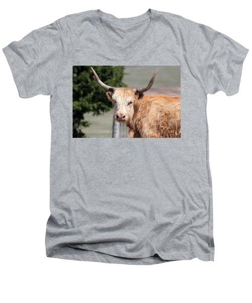 Golden Yak Men's V-Neck T-Shirt