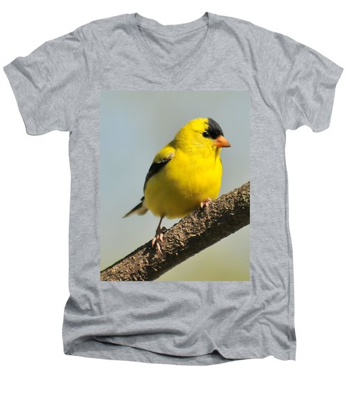 Goldfinch 306 Men's V-Neck T-Shirt