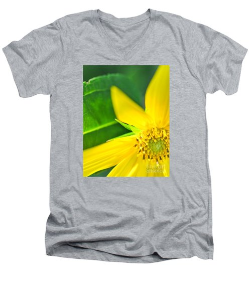 Men's V-Neck T-Shirt featuring the photograph Good Cheer by David Perry Lawrence